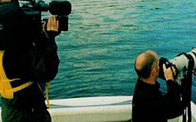 tv-film-photography